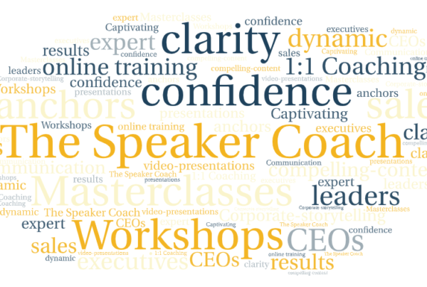 The Speaker Coach one to one coaching